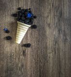 Blackberry σε ένα φλυτζάνι βαφλών για το μπλε κουδούνι λουλουδιών παγωτού σε ένα W Στοκ Φωτογραφία