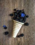 Blackberry σε ένα φλυτζάνι βαφλών για το μπλε κουδούνι λουλουδιών παγωτού σε ένα W Στοκ φωτογραφίες με δικαίωμα ελεύθερης χρήσης