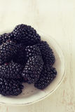 Blackberry στο πιάτο στο άσπρο υπόβαθρο Στοκ φωτογραφία με δικαίωμα ελεύθερης χρήσης