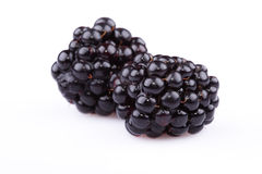 The blackberry stock images