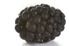 Blackberry Royalty Free Stock Photos