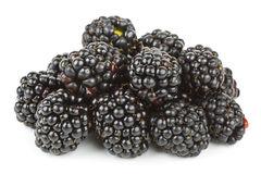 Blackberry Royalty Free Stock Images