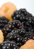 The blackberry Royalty Free Stock Photo