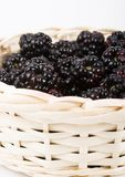 The blackberry Royalty Free Stock Photography