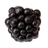 Blackberry. Macro of single blackberry,  isolated on white background Stock Photography