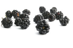Blackberry stock images