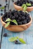 Blackberry Stock Image