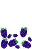 Blackberry Stock Photos