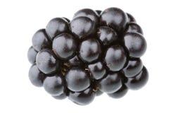 Blackberry. Single blackberry fruit isolated against white background Royalty Free Stock Photography