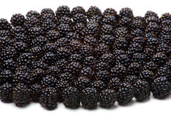 Blackberry. A lot of blackberries isolated on white Stock Photography