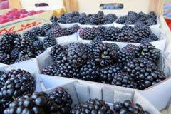 Blackberry, amora, amora preta Foto de Stock Royalty Free