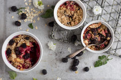 Blackberry And Apple Crumble Dessert Royalty Free Stock Photos
