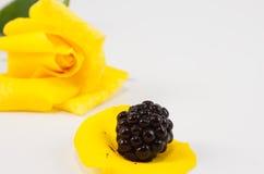 Blackberry auf gelbem rosafarbenem Blumenblatt Stockfotografie