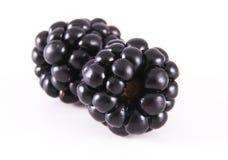 Blackberry auf Weiß. Stockfotografie