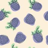 Blackberry avec le modèle sans couture de feuilles pour le site, blog, livre de coloriage, tissu Vecteur illustration libre de droits