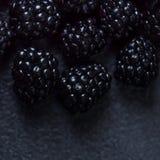 Blackberry bakgrund Closeup av nya björnbär på svart t Fotografering för Bildbyråer