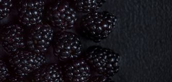 Blackberry bakgrund Closeup av nya björnbär på svart t Arkivbild