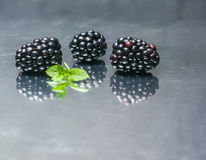 Blackberry berries on a mirror reflecting background. Stock Images