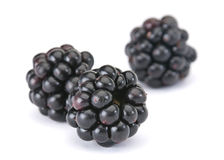 Blackberry berry. Sweet Blackberry berry closeup isolated on white background Stock Photo