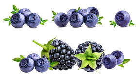 Blackberry, bilberry, blueberries isolated on white Royalty Free Stock Photos