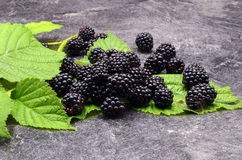 BlackBerry on black background Royalty Free Stock Photo