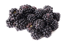 Blackberry black natural white Royalty Free Stock Images