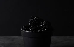 Blackberry. Blackberries in black decorative vase on a dark abstract background. Stock Photography