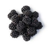 Blackberry. Isolated on white background Stock Images
