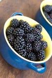 Blackberry in blauwe schotel dichte omhooggaand Royalty-vrije Stock Foto's