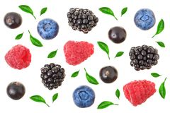 Blackberry blueberry raspberry black currant with leaves isolated on white background. Top view. Flat lay pattern.  royalty free stock photos