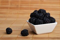 Blackberry in bowl Stock Images