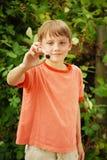 Blackberry Boy Stock Photo