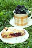 Blackberry cake Stock Photography