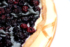 Blackberry cake Stock Photography
