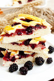 Blackberry cake slices Royalty Free Stock Images