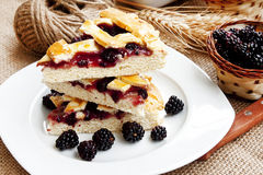 Blackberry cake slices Royalty Free Stock Photography