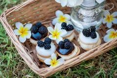 Blackberry cakes Stock Photography