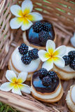 Blackberry cakes Royalty Free Stock Photography