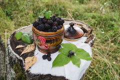 Blackberry in the casket. Natural Blackberry in the wooden casket on the forest background Royalty Free Stock Images