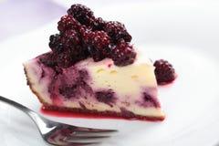 Blackberry cheesecake Stock Images