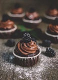 Blackberry chocolate cupcake Royalty Free Stock Photography