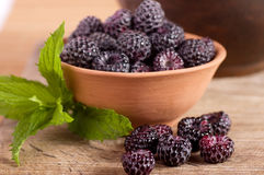 Blackberry in clay bowl Royalty Free Stock Images