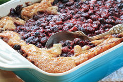Blackberry Cobbler. Macro of Blackberry Cobbler. Extreme shallow DOF with selective focus on lower corner of dish on golden crust and berries near spoon stock image