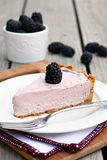 Blackberry Cream Pie Stock Images