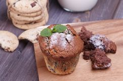 Blackberry cupcake Stock Photography