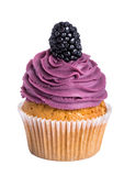 Blackberry cupcakes. With purple cream on a white background Royalty Free Stock Photos