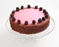 Blackberry decorated cake Stock Image