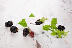Blackberry dessert. Stock Photos
