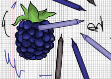 Blackberry drawn on papper Royalty Free Stock Photography