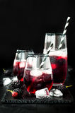 Blackberry drink in glasses with black sugar rim for fall and halloween parties. Royalty Free Stock Photo